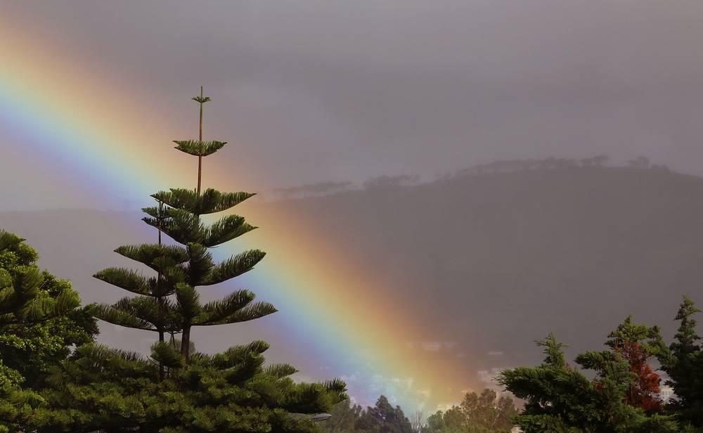 Празднование дня было учреждено в 1960 году с целью информирования общественности во всех странах о значимости работы национальных метеорологических служб. На фото: радуга в Кейптауне