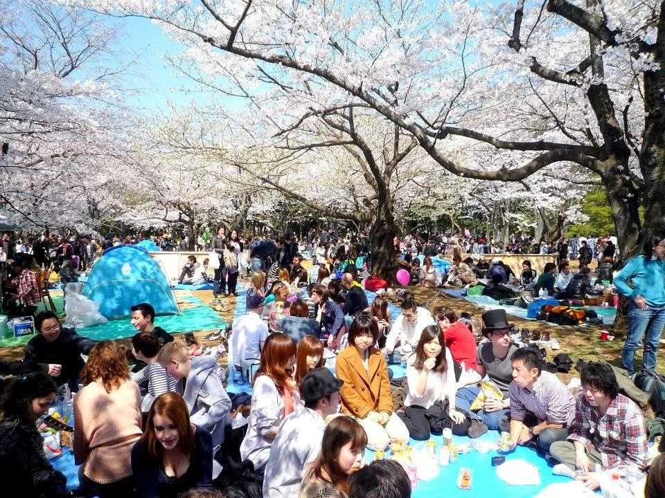 Толпы жителей страны и туристы заполняют пространство под деревьями в многочисленных парках, где устраиваются массовые пикники