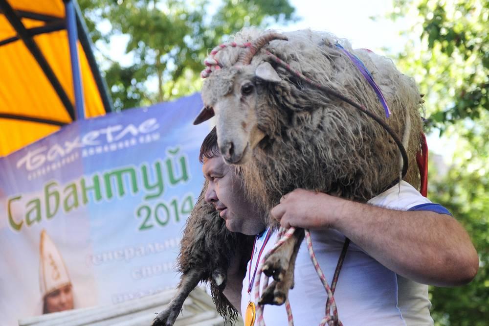 Живой баран стал главным призом состязаний, которые прошли в Новосибирске в рамках Сибирского Сабантуя-2014. Унести его на своих плечах посчастливилось Аскару Сафину