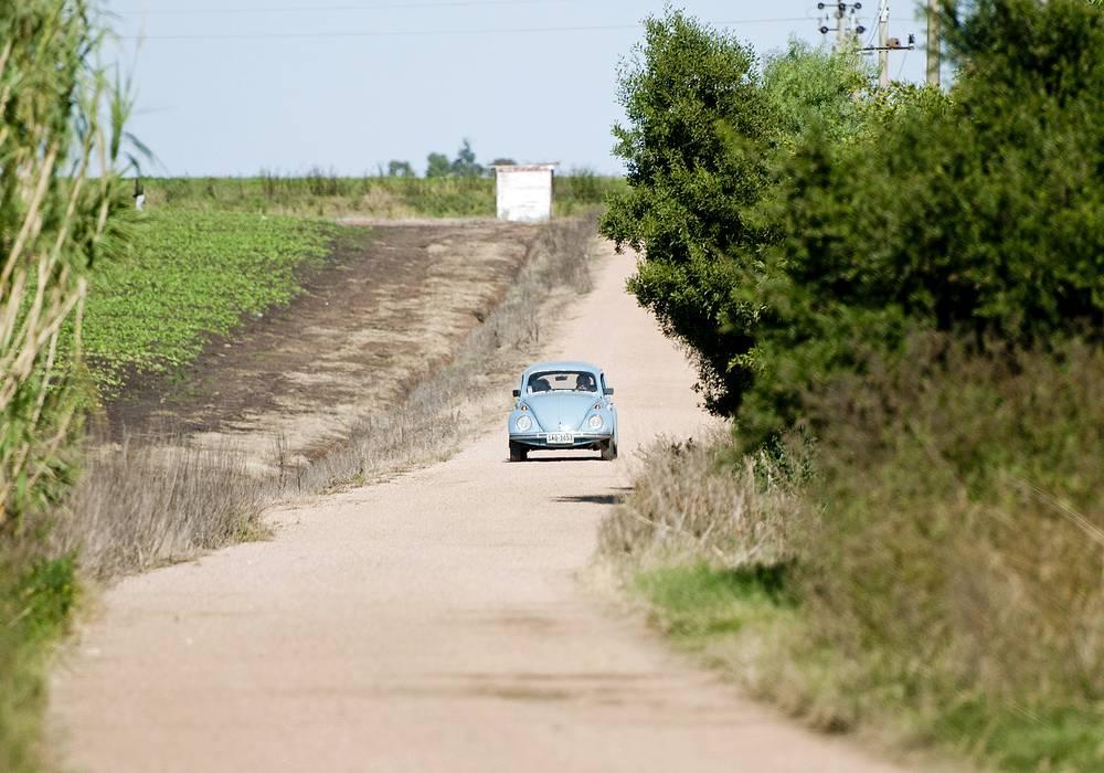 Действующий президент Уругвая Хосе Альберто Мухико 90% своего дохода отдает на благотворительность, а самое крупное его имущество в собственности - автомобиль VW Beetle 1987 года