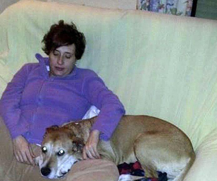 8 октября в Мадриде усыпили собаку медсестры Терезы Ромеро, у которой был выявлен вирус Эбола.  Медсестра ухаживала за двумя испанскими священниками, скончавшимися в Мадриде от лихорадки. Испанская общественность протестовала против усыпления собаки Ромеро