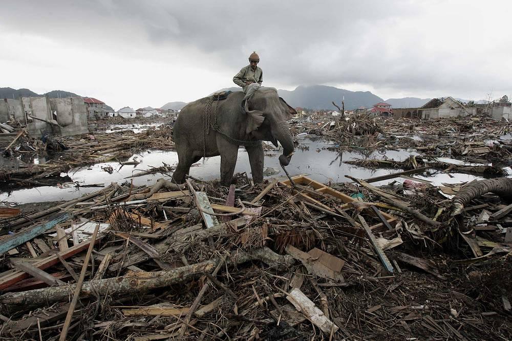 26 декабря 2004 года волна, вызванная мощным землетрясением магнитудой 9,5, обрушилась на побережье Шри-Ланки, Индии, Индонезии, Таиланда, Малайзии, Сомали, Кении. На фото: провинция Ачех, Индонезия