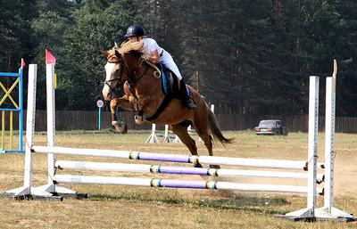 Конноспортивные соревнования на приз губернатора Архангельской области прошли в Вельске