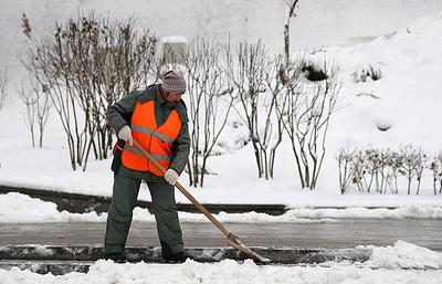 Мокрый снег и оттепель ожидаются в столичном регионе