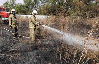 В России за минувшие выходные потушили 107 лесных пожаров