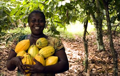 Развитие фермерства поможет Барбадосу сократить расходы на импорт продуктов