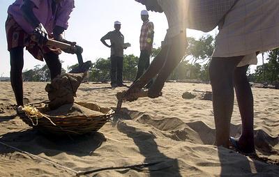 СМИ: в Индии обнаружен человеческий скелет возрастом около 5 тыс. лет