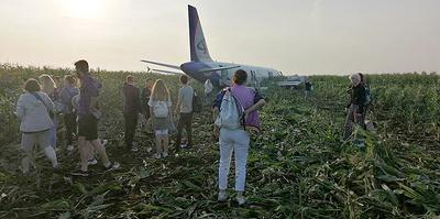 Редкий случай, чудо и аэродром. Эксперты — о посадке Airbus A321