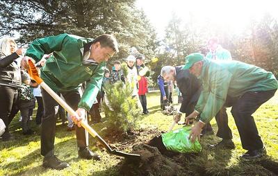 """Более 14 млн деревьев посадили в Подмосковье за шесть лет благодаря акции """"Наш лес"""""""
