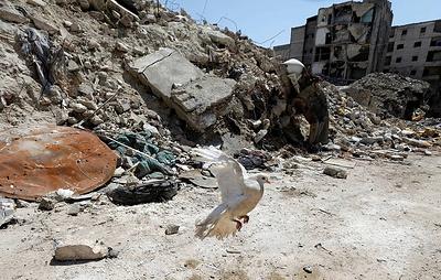 Почти 50 сирийских военных погибли в результате атак боевиков начиная с 16 января