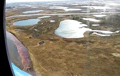 Росрыболовство: восстановление экобаланса водной системы в Норильске займет десятки лет