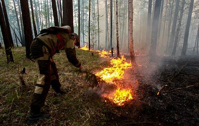 Площадь лесных пожаров в Иркутской области сократилась вдвое по сравнению с 2019 годом