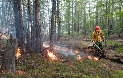 Режим ЧС введен в лесах ХМАО в связи с пожарами