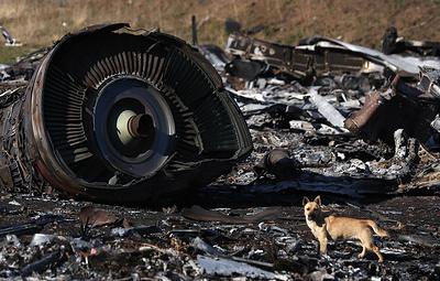 Голландский суд предлагает Пулатову лично предстать перед судьями для допроса по делу MH17