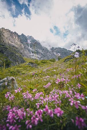 Летний пейзаж в горах.