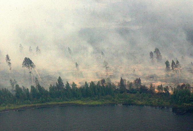 В июле-августе 2010 года на всей территории европейской части страны из-за малоподвижного антициклона установилась аномальная жара, рекордная за более чем 130-летнюю историю метеонаблюдений, в результате чего активизировались торфяные и лесные пожары