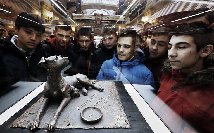 На выставке макетов памятника бездомным животным в ГУМе, Москва, 15 февраля