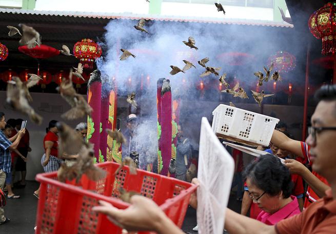 Этнические китайцы в Джакарте, Индонезия, выпускают птиц: считается, что этот ритуал принесет удачу в новом году