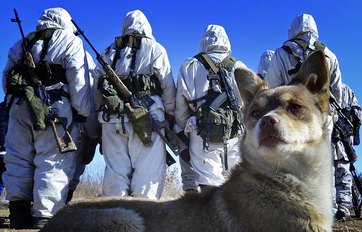 Учения подразделений военной разведки
