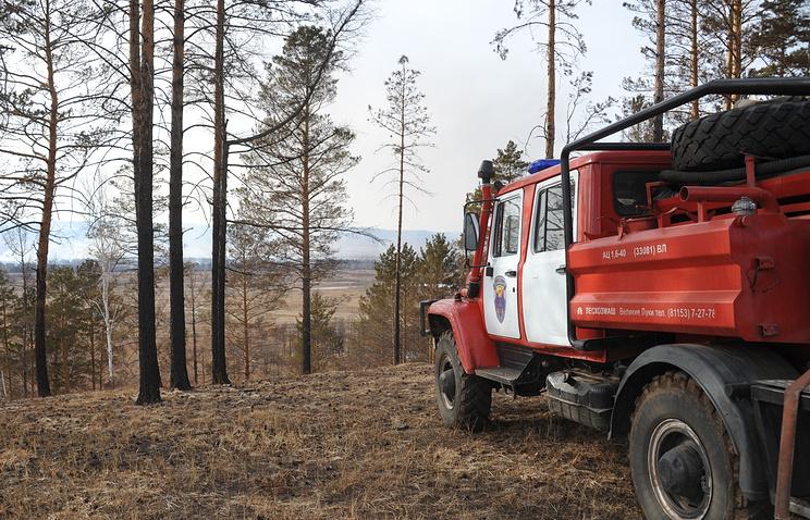 На далеком Востоке потушили все лесные пожары