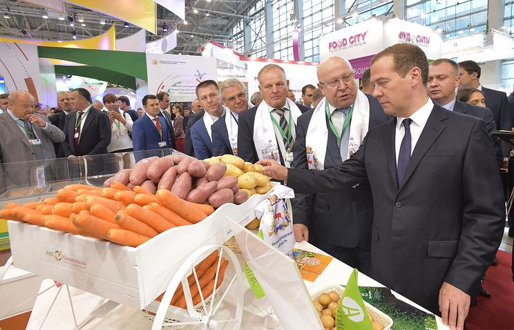 Медведев осмотрел экспозицию Нижегородской области насельхозвыставке «Золотая осень»