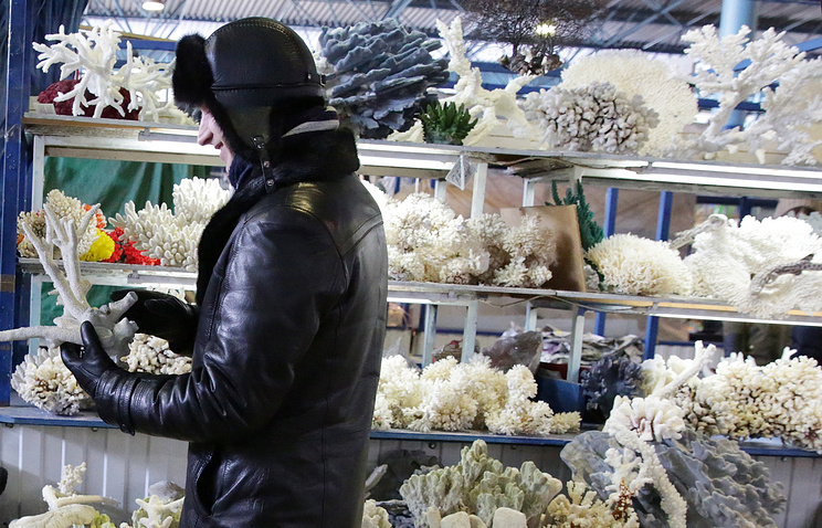 Китай вводит запрет на изделия из кораллов