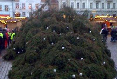 Фото www.postimees.ee
