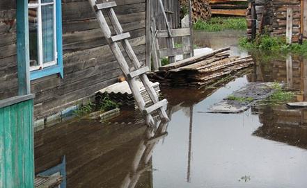 В одном из дворов подтопленного села Ивановка. Фото ИТАР-ТАСС/ МЧС по Амурской области