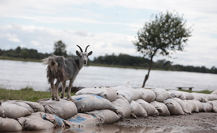 Фото ИТАР-ТАСС/ Денис Вышинский