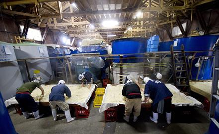 Производство сакэ в Японии. Фото из архива EPA/ИТАР-ТАСС